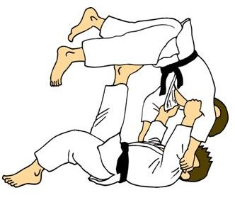 Judo Strategy in Business